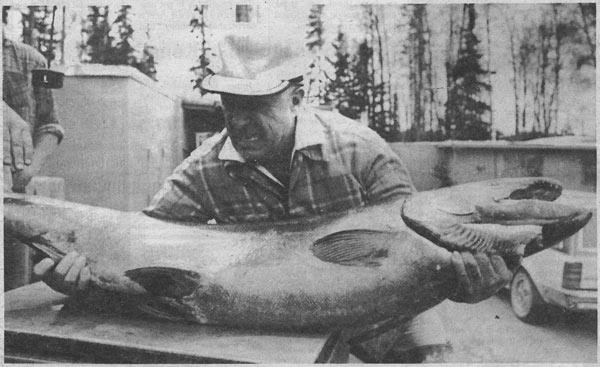 World Record Chinook Salmon!